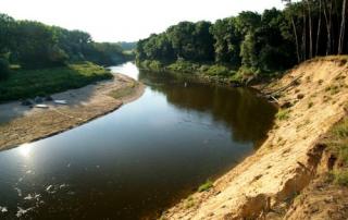 Písečné břehy meandrů řeky Moravy